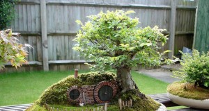 38 Extraordinary Fairy Garden Ideas