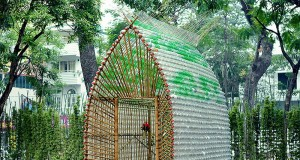 Lovely Ideas to Recycle Plastic Bottles
