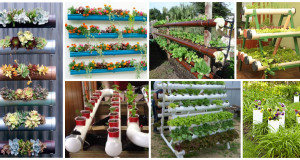 12 Amazing PVC Pipe Planters To Liven Up Your Garden