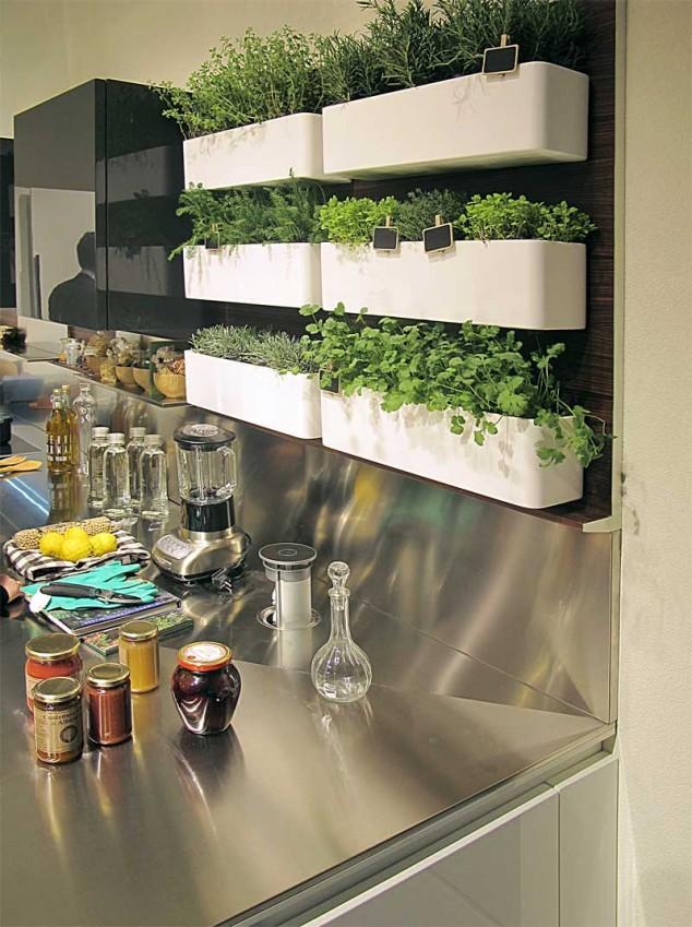 Kitchen herb garden in planters