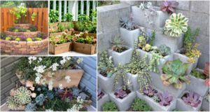 DIY Corner Planters Perfect For Small Gardens
