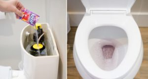 Amazing Toilet Tricks that Will Save You Time and Money