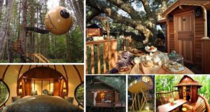 DIY Luxury Tree Houses